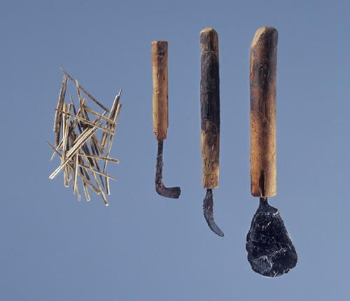 Kirurgiske reskaber fra jernalderen. Knoglesave og torne til at holde sammen på sår. Genstandene kan ses i Illerup Ådal udstillingen på Moesgård Museum. Foto: Moesgård