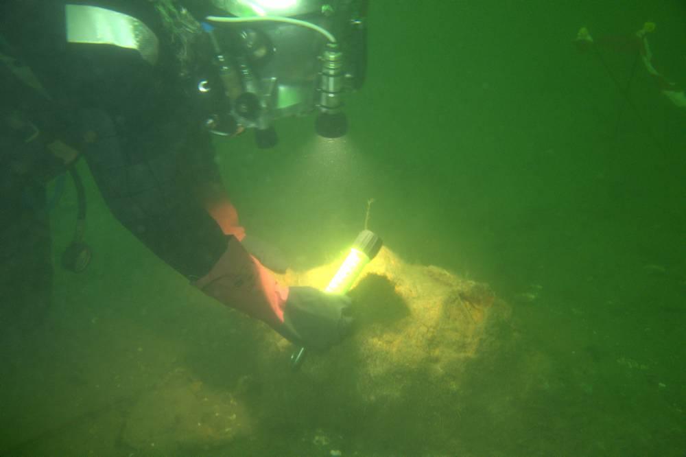 Martin, dykker fra JD-Contractor, er sendt ned for at vurdere, hvordan kanonen bedst kan hæves, hvor de kan løftes og om de eventuelt hænger fast i noget. Foto: Morten Johansen, Vikingeskibsmuseet.