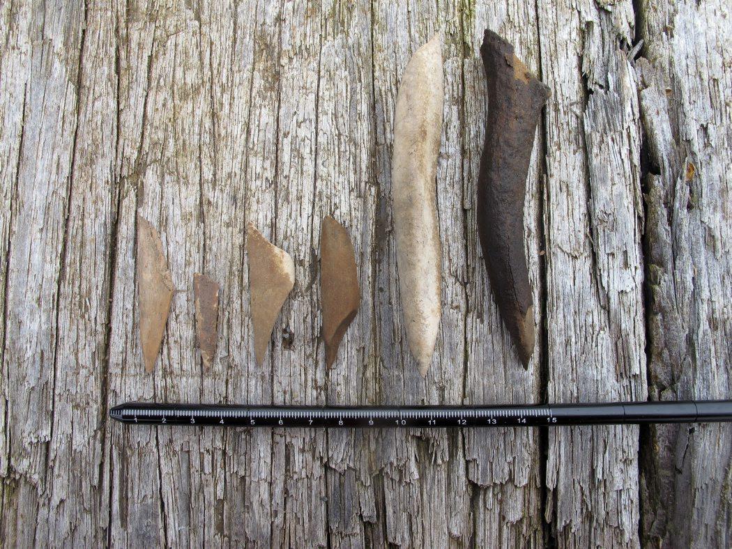 Stenaldermenneskene brugte også redskaber lavet af ben. Her ses forskellige benspidser og trykstok af gevir (længst til højre), der blev anvendt til at lave lange flækker af flint. Foto: Jørgen Dencker
