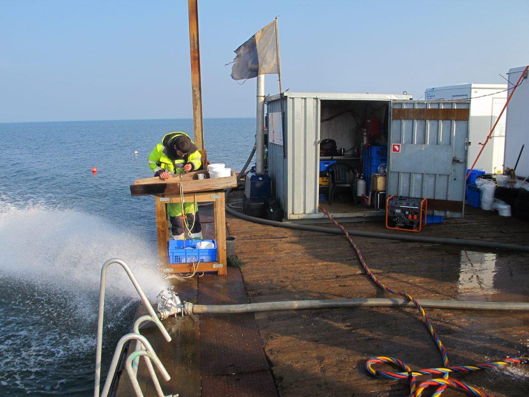 Dykkeren ved at blive gjort klar til dykning. Foto: Jørgen Dencker
