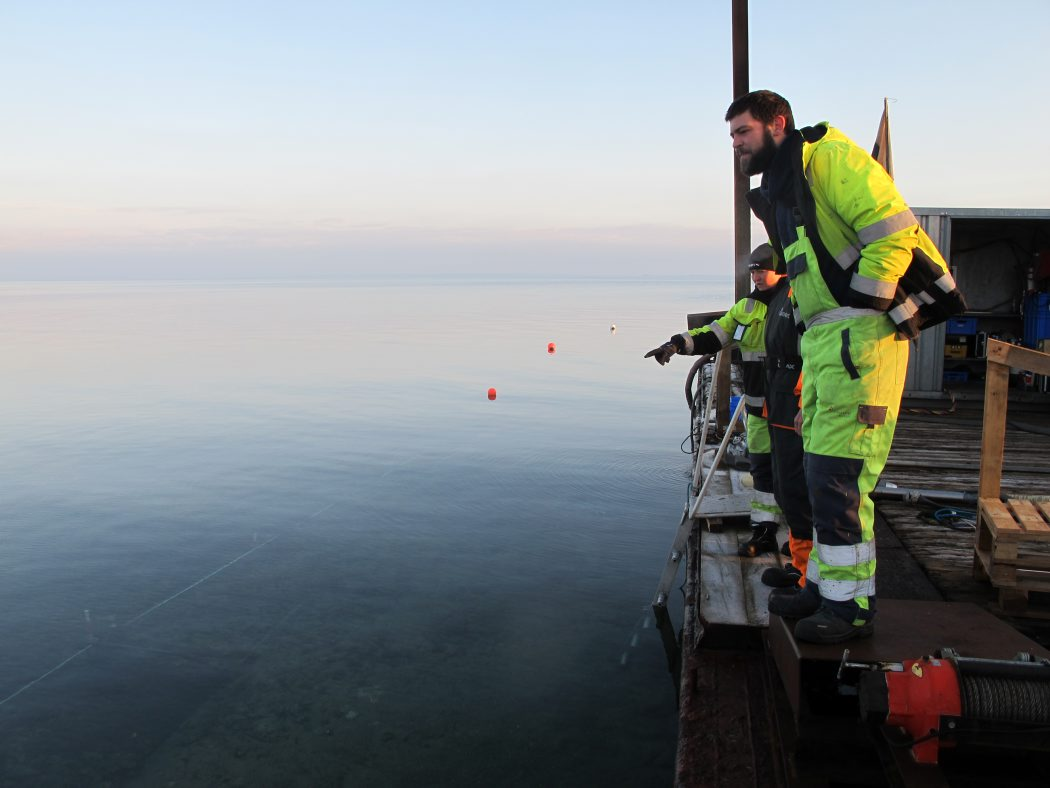 Fra dykkerflåden er det muligt at ses, hvad marinarkæologerne arbejder med. Det er en uvant oplevelse, da de marinarkæologiske undersøgelser oftes foregår på dybere vand. Foto: Jørgen Dencker