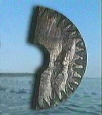 Solkompasset fra Grønland.