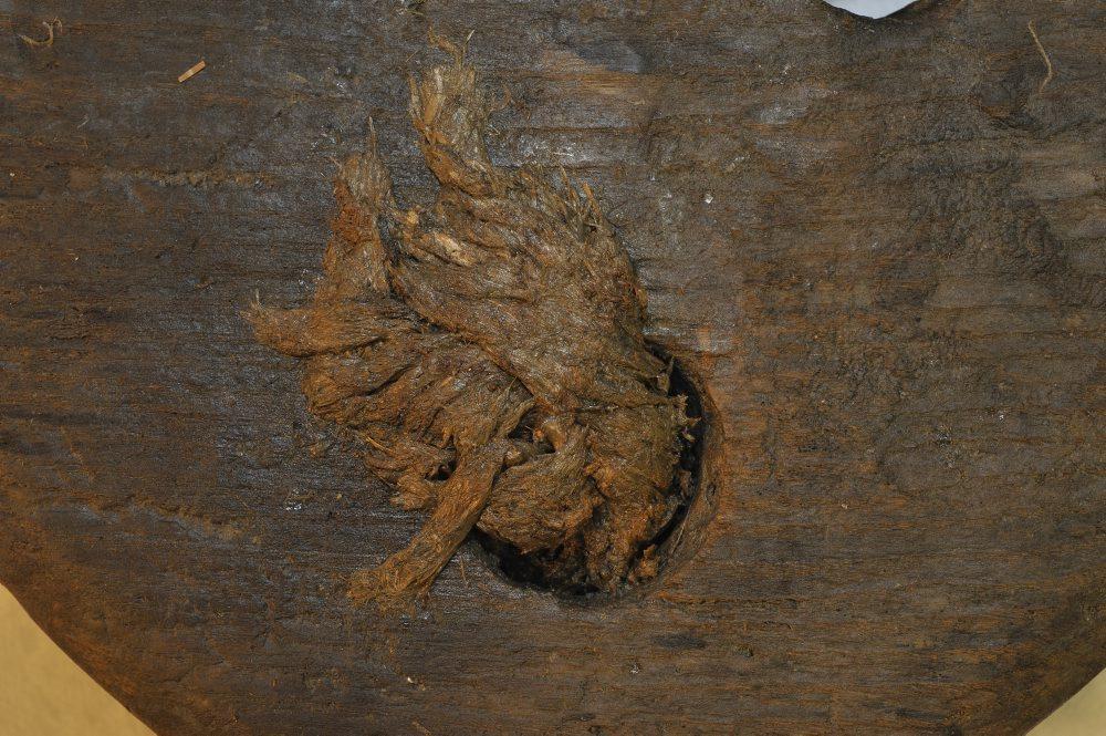 Bemærk resterne af tovværk, som stadig sidder i jomfruens huller. Foto: Morten Johansen, Vikingeskibsmuseet.