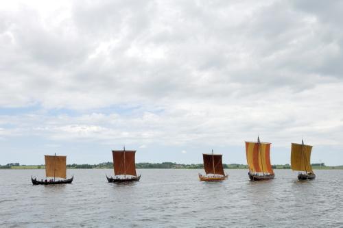 De fem rekonstruktioner af Skuldelevskibene sejler fredeligt rundt på Roskilde Fjord.